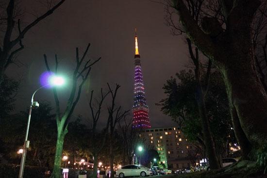 TOKYO_TOWER_20120316_003.jpg