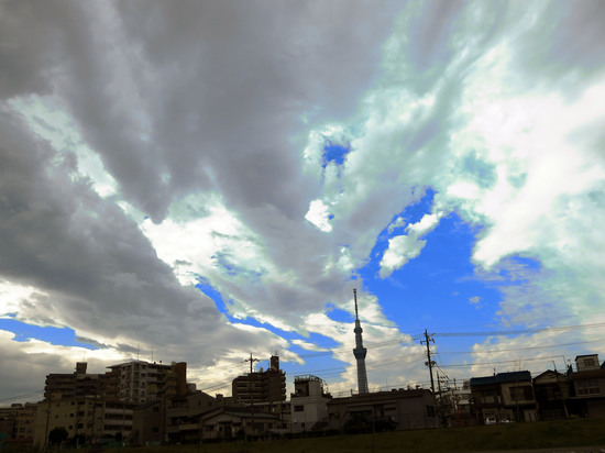 20131110_010.jpg